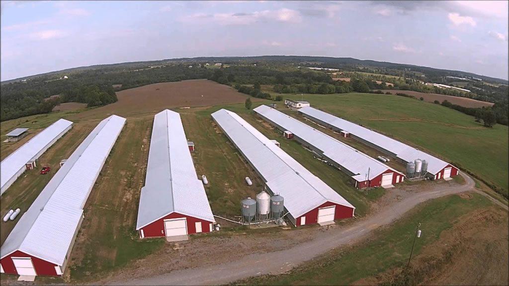 Tavuk Çiftliği Güneş Paneli ile Güneş Enerjisi Elektrik Üretimi